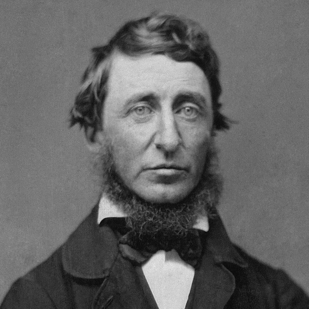 Thoreau y el Movimiento Tiny House